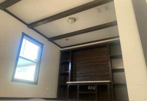 Meridian Emerald 56 - S56J - Living Room
