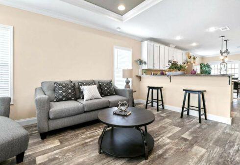 Clayton Crenshaw - DEV28603A - Living Room 2